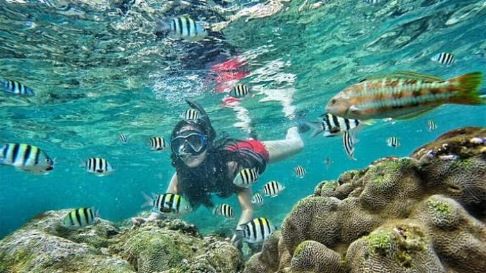 Outbound di Pantai Sundak Jogja dengan Snorkeling Pantai Sadranan